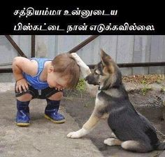 Tamil Funny Dog And Boy With Comment