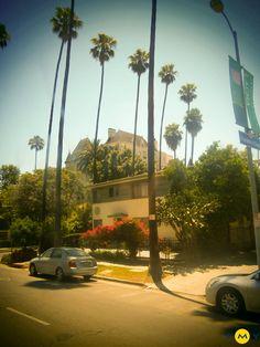 Emy Cursos en el extranjero. Cursos de inglés en Estados Unidos. Cursos de inglés en Los Angeles con clases, actividades y excursiones. Aprender inglés en California Aprende inglés en USA de la mano de EMY. #EMYCUSOS #LosAngeles #CursosIngles #USA Actividades #LosAngelesTour