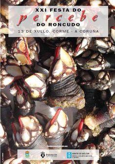 Festas De Galicia Festasdegalicia Perfil Pinterest