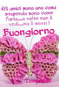 Geburtstagswunsche italienisch text