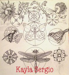 Kayla Sergio: the middle butterfly is dope