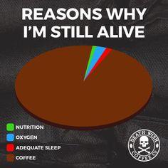 Reasons I'm still alive