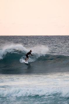 779 mejores imágenes de • Surf • en 2019 6bfb133e70e