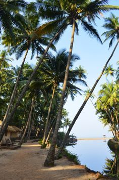 Top Beach Resorts in the World You Should Visit - Go Travels Plan Best Places To Honeymoon, Places To Travel, Places To See, Wonderful Places, Beautiful Places, Weather In India, Beautiful Landscape Wallpaper, Goa India, Paradise Found