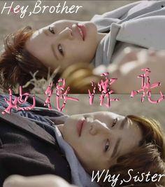 MBC Drama She Was Pretty Confirms Leads Park Seo Joon, Hwang Jung Eum, and Go Joon Hee | A Koala's Playground