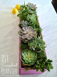 DIY Wood Spring Succulent Planter at Tatertots and Jello #DIY #Spring