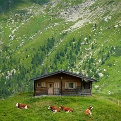 This is an Austrian mountain farm in the high summer pastures in Austria. Country Life, Country Living, Log Cabin Homes, Log Cabins, Cabins And Cottages, Cabins In The Woods, Austria, Beautiful Places, Scenery