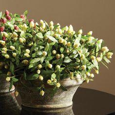 Flowering Clover Faux Plant - White