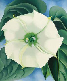 Georgia O'Keeffe / Jimson Weed/White Flower No. 1 / 1932 / oil on canvas
