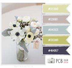 Photographer Templates by Photo Card Boutique - Photo Card Boutique, LLC Colour Schemes, Color Patterns, Color Combos, Design Seeds, Color Blending, Color Mixing, Color Palate, Color Box, Color Swatches