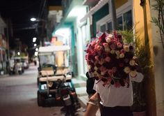 Esta es mi foto favorita de isla mujeres.  When we saw him walk by at night, I started madly adjusting my camera settings, and booking it down the alley to chase him to get a picture of his beautiful flowers.  #travelgram #neverstopexploring #exploremore #wanderlust #carribbean #roses #getoutthere #exploreeverything  #liveadventure #adventureisoutthere #adventureawaits #adventureanywhere #travelbug #traveldiary #travelphoto #mexico  #beyondthewanderlust #travelersnotebook #travelwithme…