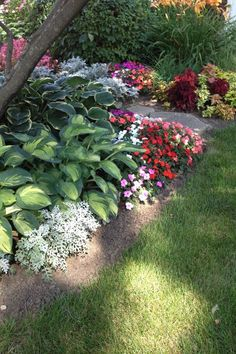 Pretty hostas and inpatients along this shade garden.