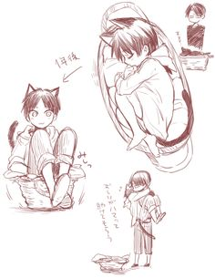 Neko Eren and Levi // AoT