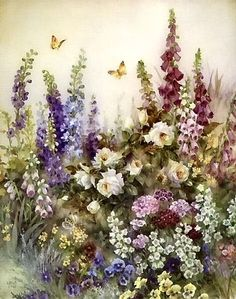 Spring Flowers & Butterflies