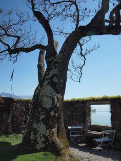 Villa Le Lac : Le Corbusier