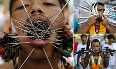 Now that\'s a holey festival! Thai men force horrifyingly sharp spikes, huge knives and the barrels of guns through their cheeks as they celebrate being vegetarian   WARNING GRAPHIC CONTENT: Devotees of the Chinese Samkong Shrine completed a procession in Phuket Nine-day festival sees followers give up various products during the ninth lunar month of the Chinese calendar  Participants believe the act of body piercing can help them shift any evil spirits and obtain peace of mind.