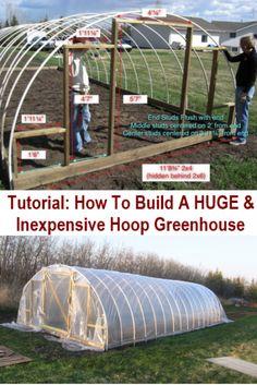 DIY Huge & Inexpensive Hoop Style Greenhouse