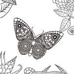 Butterfly coloring pages for adults or kids: free printables Butterfly Coloring Page, Dog Haircuts, Free Coloring Pages, Free Printables, Hair Cuts, Brooch, Activities, Fun, Kids