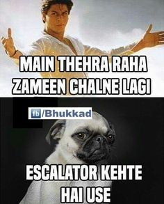 Escalator kehte hen use Funny Minion Memes, Funny School Jokes, Very Funny Jokes, Crazy Funny Memes, Really Funny Memes, Funny Facts, Hilarious, Funny Pick, Funny Laugh