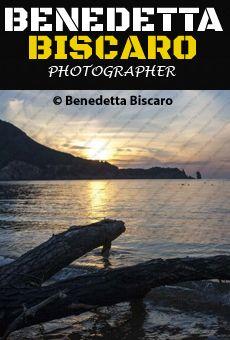 Corsi di Fotografia - . Tutti i tuoi eventi su ViaVaiNet, il portale degli eventi più consultato per il tempo libero nella provincia di Rovigo e nella Bassa Padovana