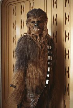 Chewbacca in Empire Strikes Back