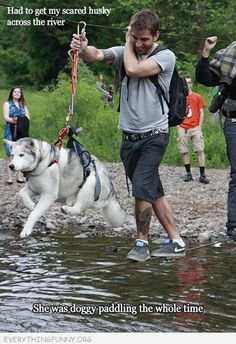 funny caption- getting the scared dog across the river.