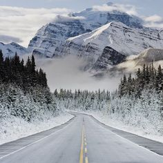 It's bad manners to keep a road trip waiting | Rocky Mountains, Canada   - Explore the World with Travel Nerd Nici, one Country at a Time. http://TravelNerdNici.com