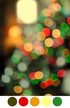 MUFFINS IN MY BACKPACK: Color palette: Bokeh Christmas lights.