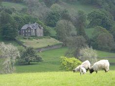 Near Sawrey  --- I LOVE the English Countryside...