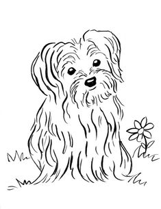 W3 Free Coloring Pages For Upside Down Drawing Cc Fine Arts Yorkie Coloring Pages