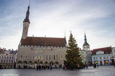 Tallinn Sightseeing