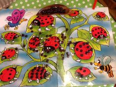 Laminated lady bird poster and ladybird nuggets for counting, matching and subitising. To be developed throughout the week.