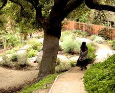 Inside The Home Of Shiva Rose - Inside Shiva Rose's House (dream garden)