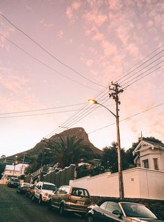 The Elephant's Guide to Cape Town. | The Midnight Blue Elephant