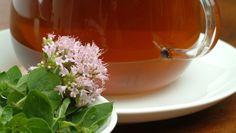 Pripravte si zázračný oreganový olej.