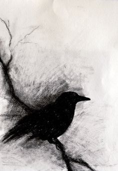 Raven on a Branch ORIGINAL Charcoal Drawing Gothic Halloween Wall Art Bird…