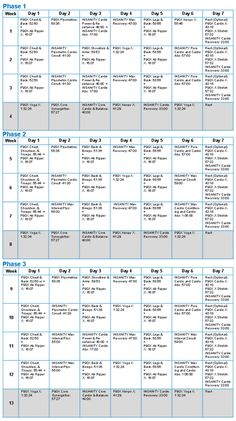 LOVE P90X...and I def need to get back to it! Here are some free P90X Workout links...