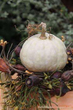 Mini Pumpkin Vignette   @Melissa Valeriote