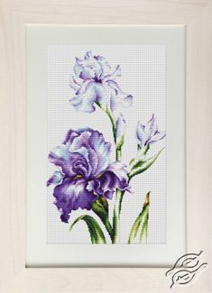 Irises I - Cross Stitch Kits by Luca-S - B2251