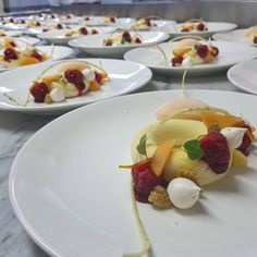 White Chocolate Sweet Melon  Raspberry Orange Ginger Meringue