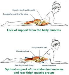 2b. By straining the muscles of the abdomen and pulling them up, we tilt the pelvis back into position. Make sure to firmly press the pelvis to the mat and pull your stomach and abdominal muscles to direct the effort toward your chest, as shown on the illustration just above. This will not allow the pelvis to tilt forward and it will remove unnecessary tension in the lumbar region. The ability to use your abdominal muscles to stabilize the lumbar region is necessary to optimally perform…