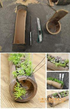 vaso com bambu