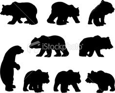 bear outline | Search for stock photos, illustrations, video, audio and editorial ...