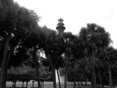 Lighthouse at Huntnting Island, SC.