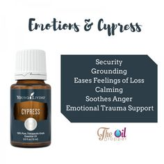 The Oil Dropper | Staying Healthy One Drop At A Time|Essential Oil Benefits