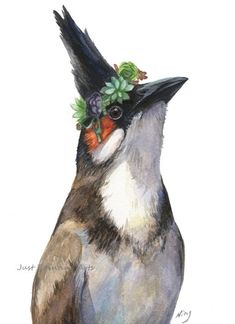 20% off Red whiskered bulbul and succulent crown,Succulent,Bird - Art Print 8.5 x11(letter size)