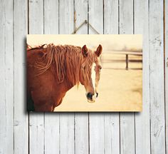 """Sunny - 16x24"""" canvas print - Horse decor - Horse art - Horse photography - Chestnut horse photography - Horse canvas - Red and yellow decor."""