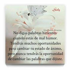 vivir para volar frases - BúsquedadeGoogle Thought Of The Day, Wise Quotes, Wisdom, Thoughts, Sayings, My Love, Inspiration, Tic Tok, Nostalgia