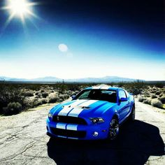 Magnificent Shelby GT 500 Cobra