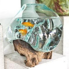 Fishbowl or Pot glass decor adapted to a root portion of the tree. It comes in two detachable parts. Perfect for decorating with exotic touches.